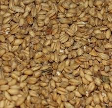 Malteries Franco-Belges Caramel Wheat Malt - 55 LB