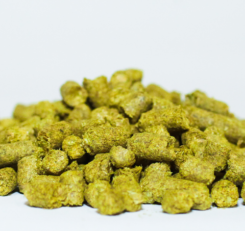 Hallertau Hersbrucker Hops (German) - Pellets - 1 LB