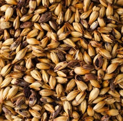 Great Western Malting Co. 2-Row Crystal 150 Malt - 50 LB