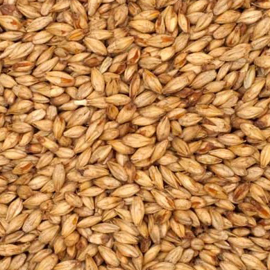 Briess Mesquite Smoked Malt - 50 LB