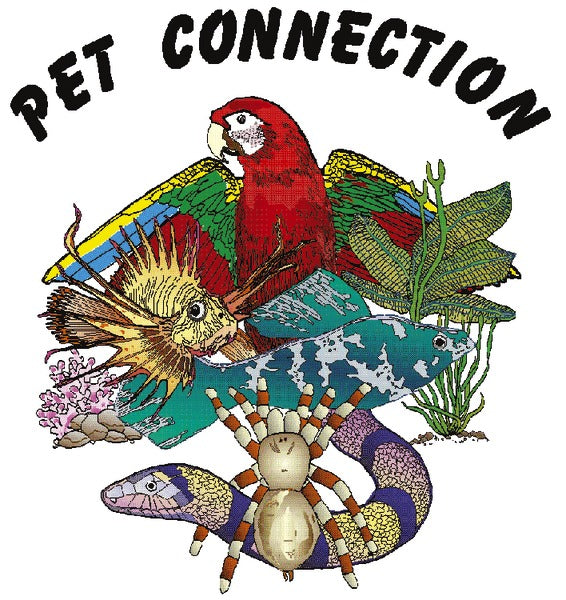 Pet Connection