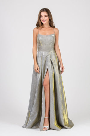 Metallic Shimmery Floor Length A Line Scoop Gown | 2 Colors