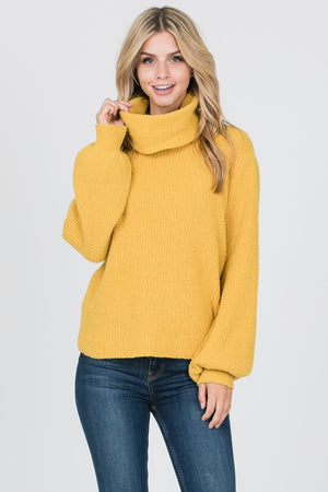 Solid Wool Turtleneck Sweater | 2 Colors Available