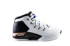 Air Jordan 17 Copper
