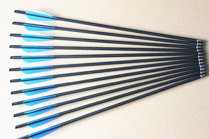 "24Pcs Carbon Arrows 22"" Crossbow Bolts for Crossbow Hunting/Shooting"
