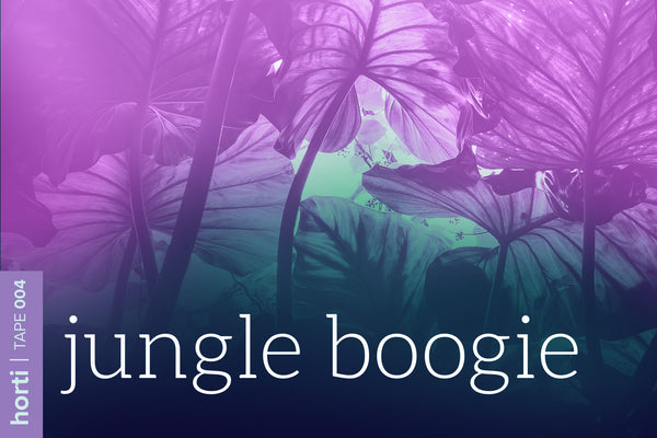 Tape 004: Jungle boogie