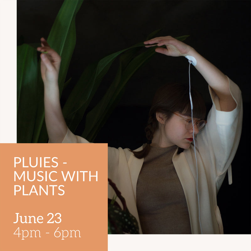 PLUIES - Music with plants  // June 23