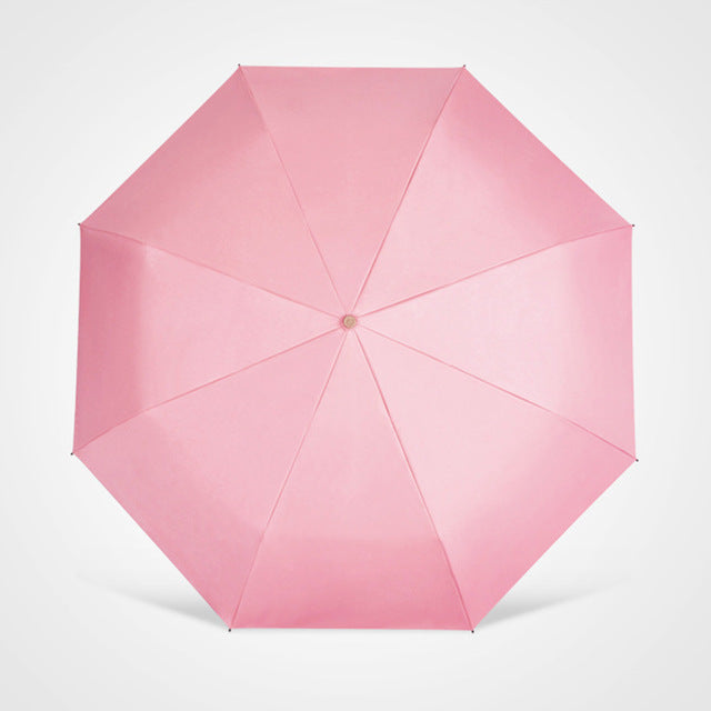 Niello Coated Umbrella