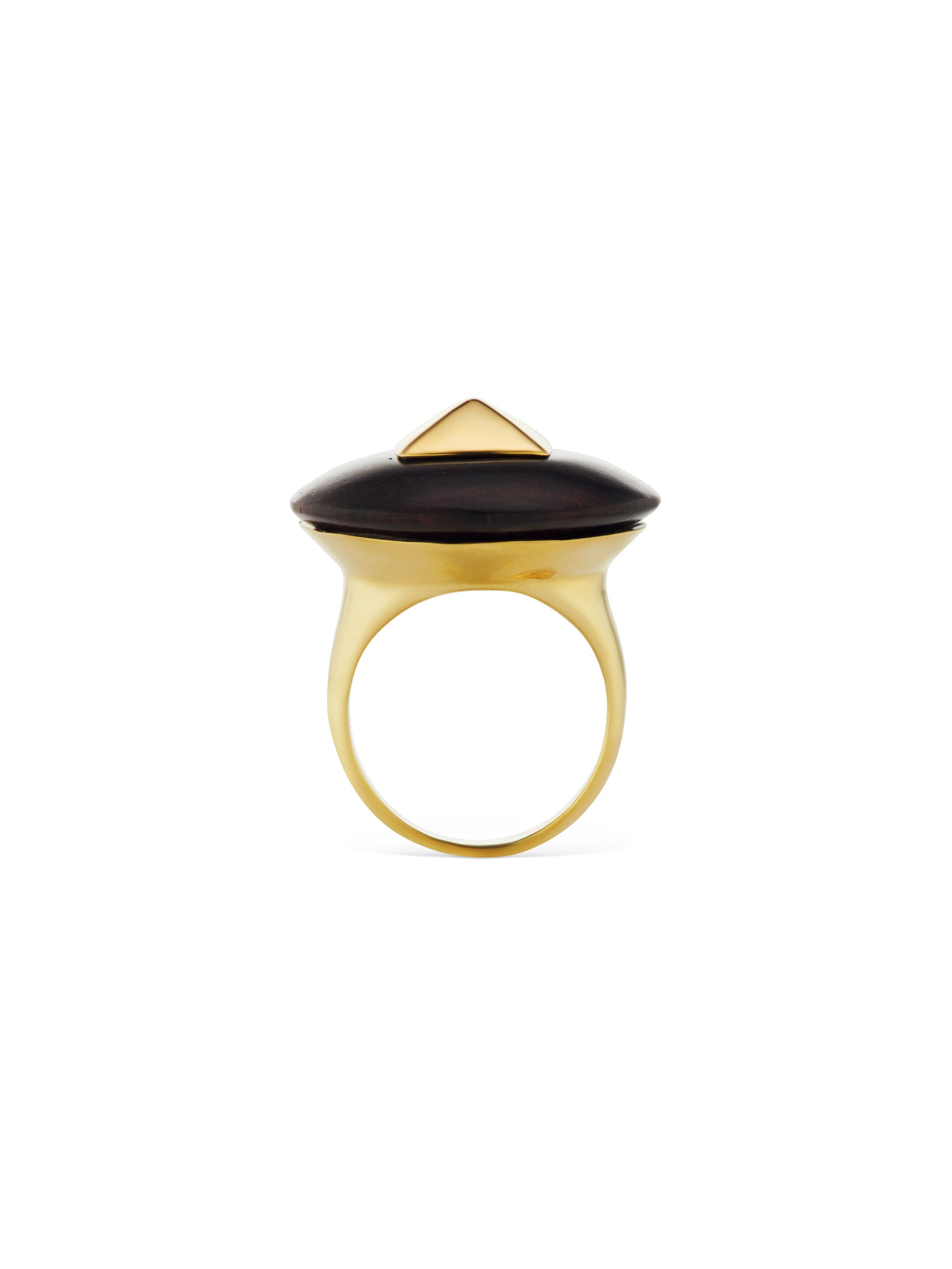 Voyager Disk Ring with Gold Center Ring