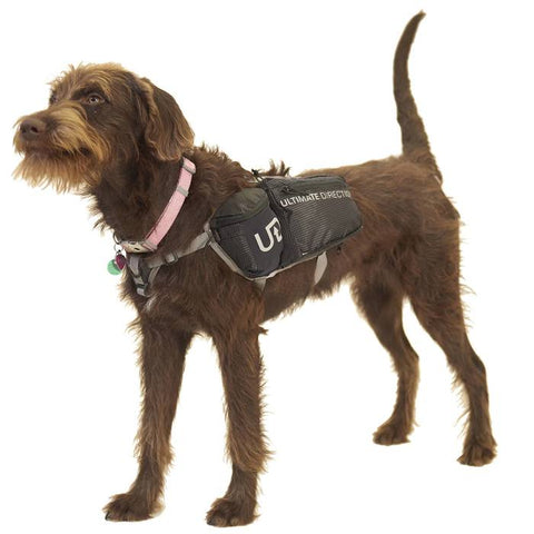 Ultimate Direction - Dog Vest