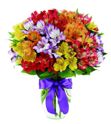 Alstromeria Rainbow Bouquet
