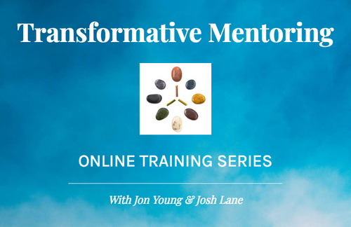 Transformative Mentoring Online Training Series