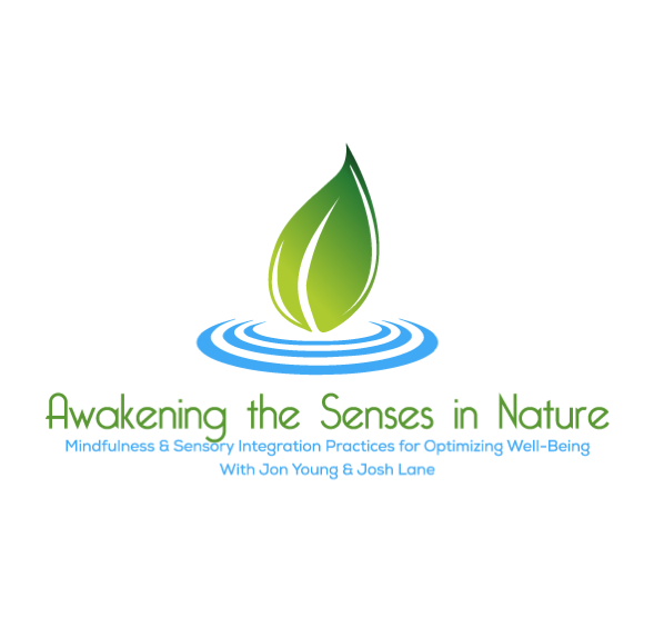 Awakening the Senses Online Course