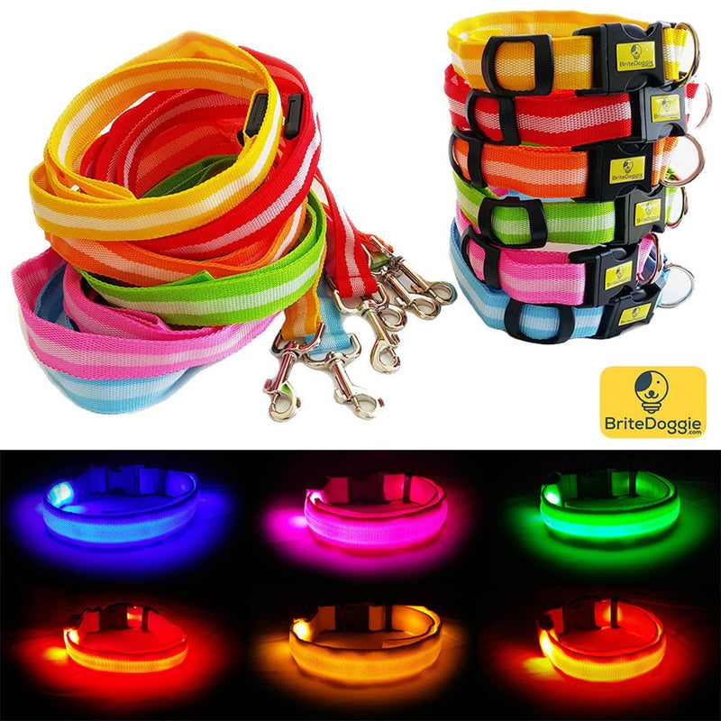 Get A BriteDoggie LED Pet Safety Collar