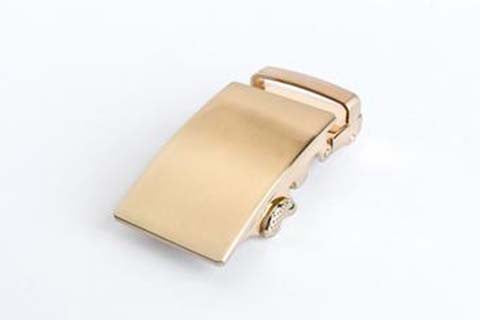 Stylish gold buckle