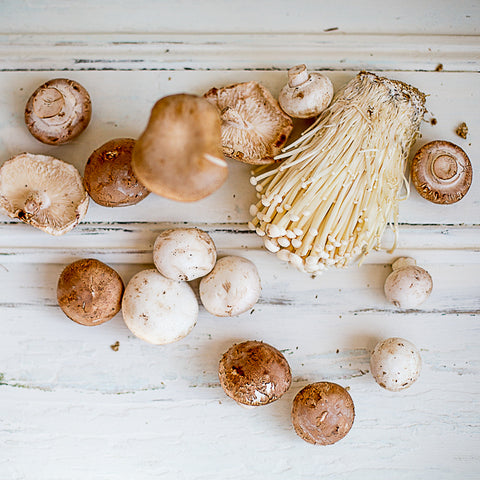 Local Mushrooms at Your Food Collective