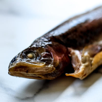 Local Smoked Trout from Arc-en-Ciel trout Farm at Your Food Collective