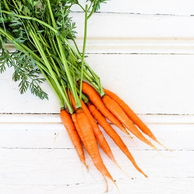 Local Dutch Carrots at YOur Food Collective