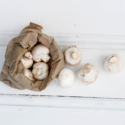 Local Mushrooms from Producer at Your Food Collective