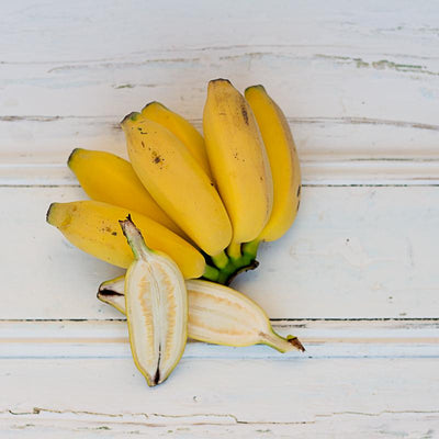 Local Bananas (Lady Finger) - Bunch (approx 5/6)