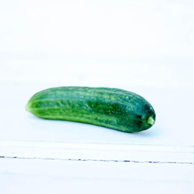 Local Organic Cucumber from Riverbank at Your Food Collective