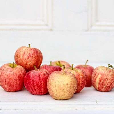 Local Royal Gala Apples from Hillside Harvest at Your Food Collective