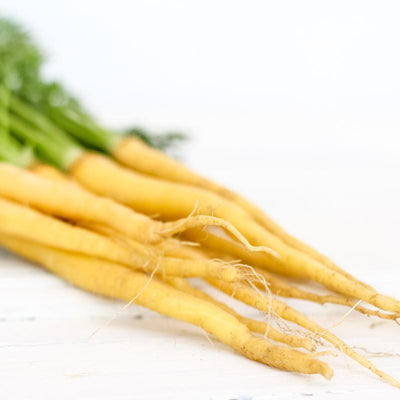 Local Dutch Carrots from Chetcuti Produce at Your Food Collective