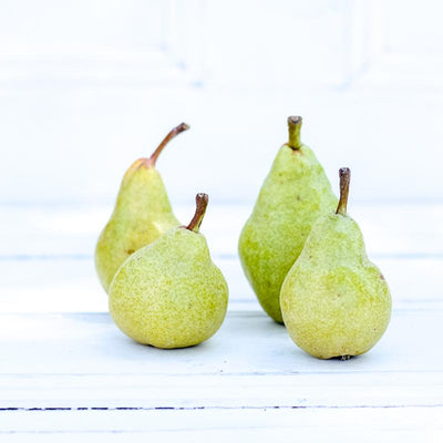 Local Williams Pears from Hillside Harvest at Your Food Collective