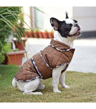 HUFT Grrrberry Dog Jacket - Brown