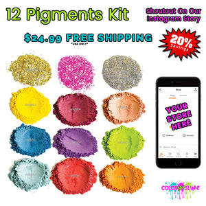 Easy Starter Kit - 12 Pigments & Instagram Shoutout