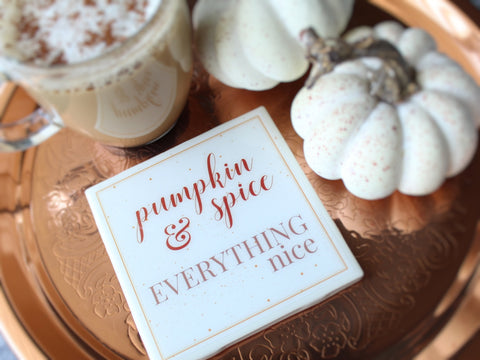 Pumpkin Spice & Everything Nice Fall Coaster