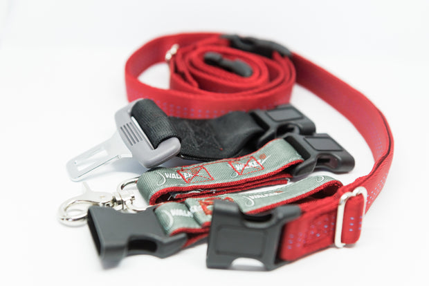 Utility Belt for Dog Walks