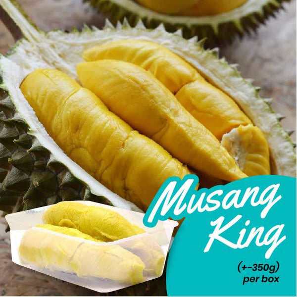 Fresh Musang King Durian (+-350g / box)