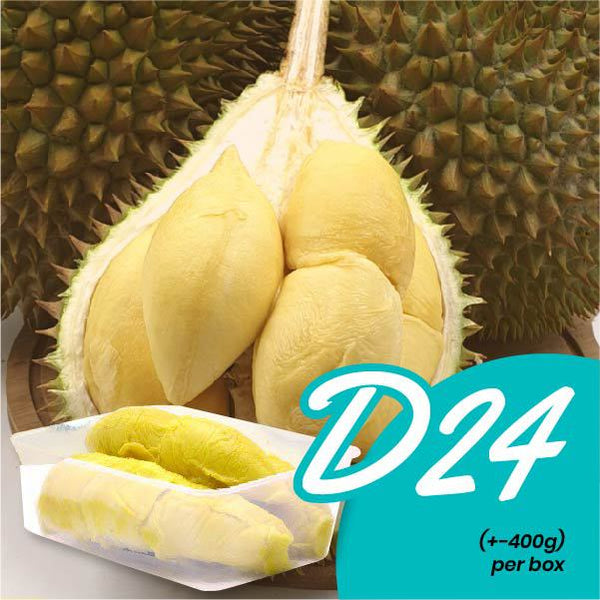 Fresh D24 Durian (+- 400g / box)