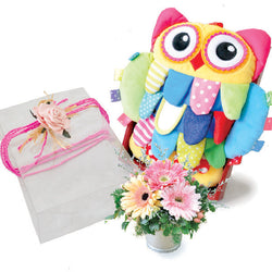 Baby Woodsy Owl - Soft Baby Developmental Owl Plushies with Gerberas Baby Shower Gift