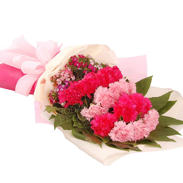 [1 Days Pre-Order] Demetrius Carnations - Hand Bouquet
