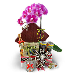 Magnolia Orchid - Halal Hamper Gift with Phalaenopsis Orchid