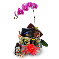 Pudina Orchid - Halal Food Hamper Gift w Phalaenopsis Orchid