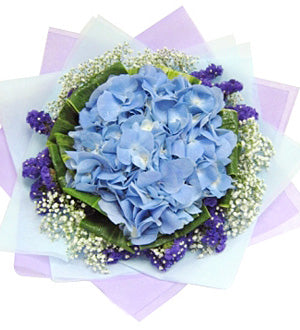[1 Day Pre-Order] SOLELY HYDRANGEA - HAND BOUQUET