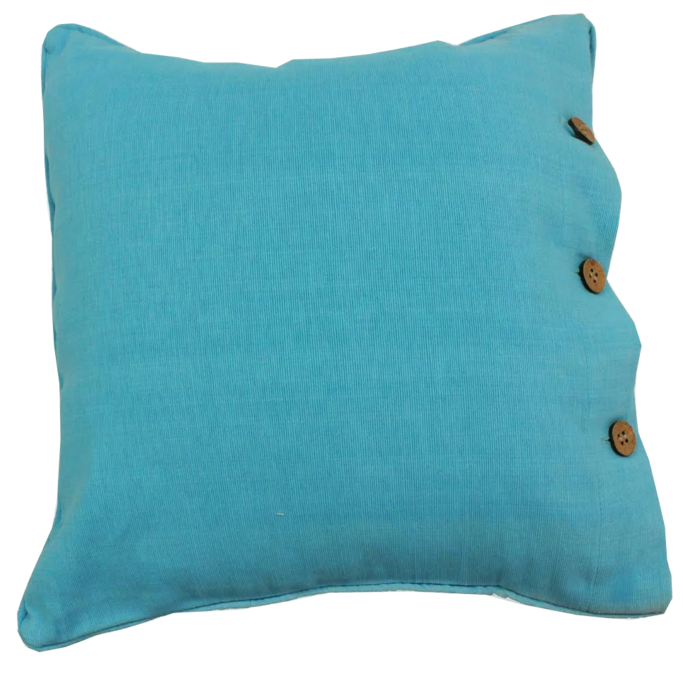 Pale Blue Cotton Cushion Cover