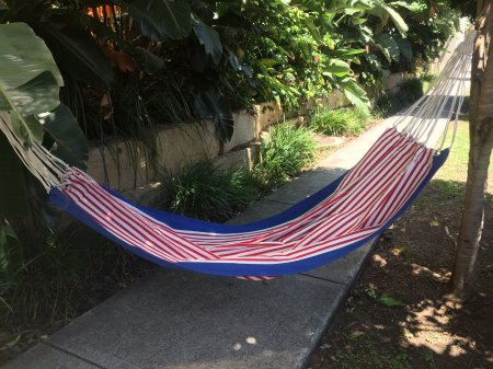 New York Blue Hammock