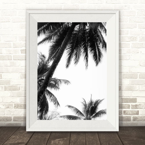 """Coco Bay"" Photography Print"