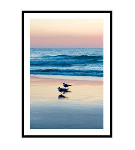 Early Birds Photography Print
