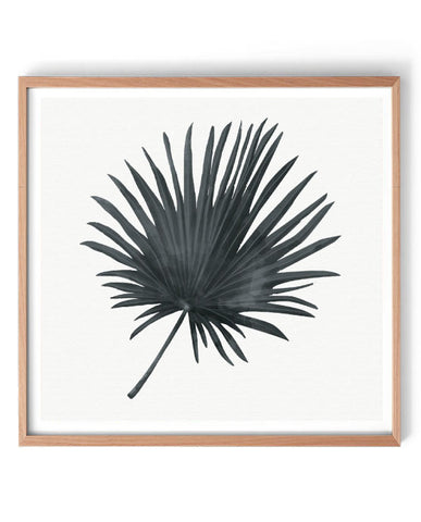 Black Fan Palm Print