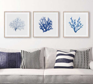 Blue Coral Watercolour Set of 3 Wall Art Prints