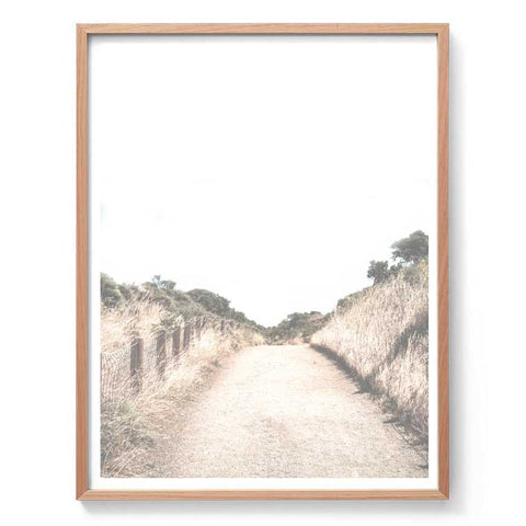 Country Path Photography Print