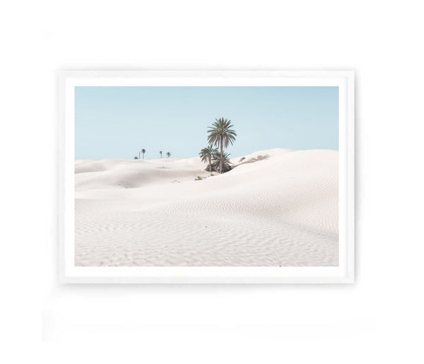 Desert Palms Photography Print