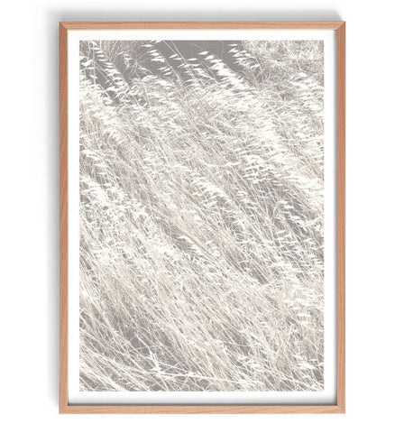 Dried Grass Fields Print
