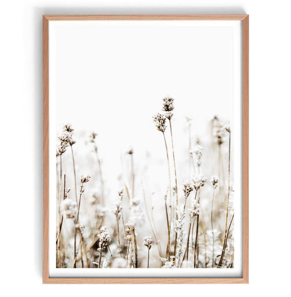 Dried Grasses Set of 2