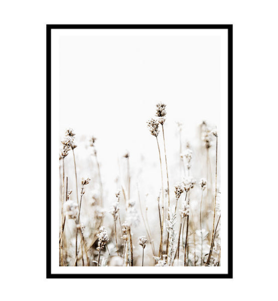 Grass Fields Print
